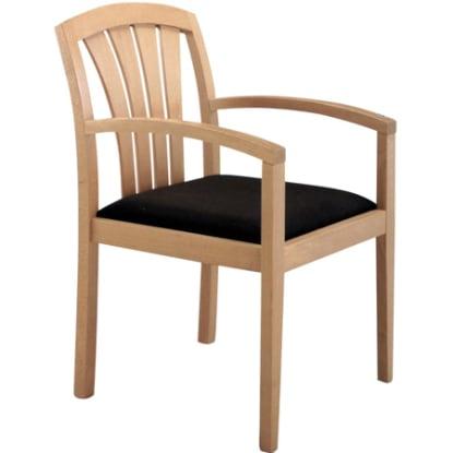 Fan Back Arm Chair